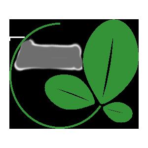 IlocosMoringa